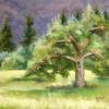 parures_c3a9carlates_pastel_sec_16x20po