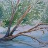 peinture-aquarelle-reflets-d-arbres-cours-peinture-linda-boyte_287koa-jpg-1