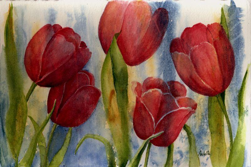 Bravo les tulipes