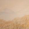 Brouillard au pied du Mont Saint-Grégoire