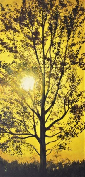 L\'arbre