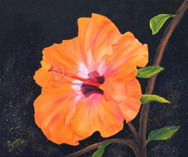 Fleur d\'hibiscus huile