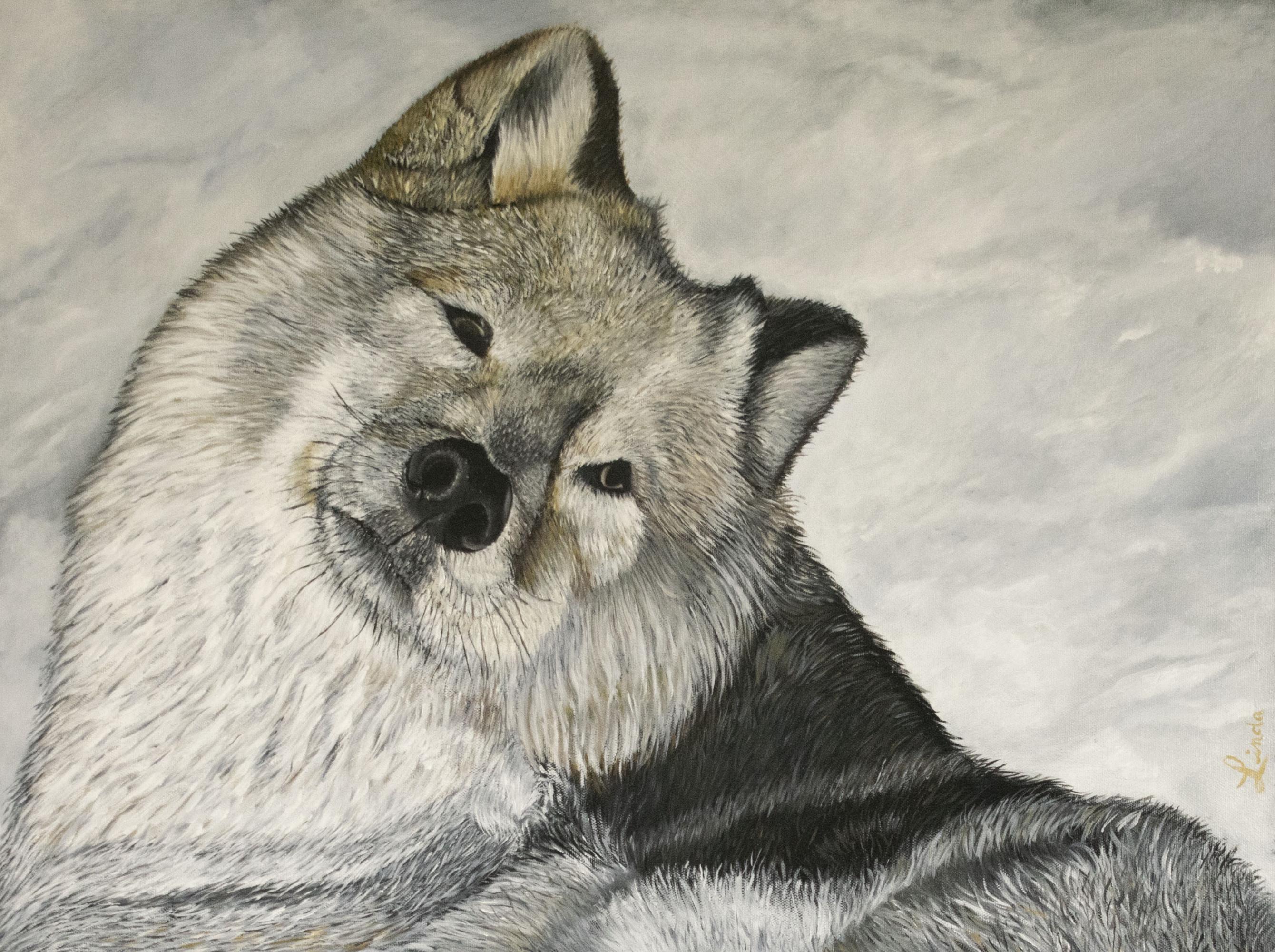 Loup-24x18