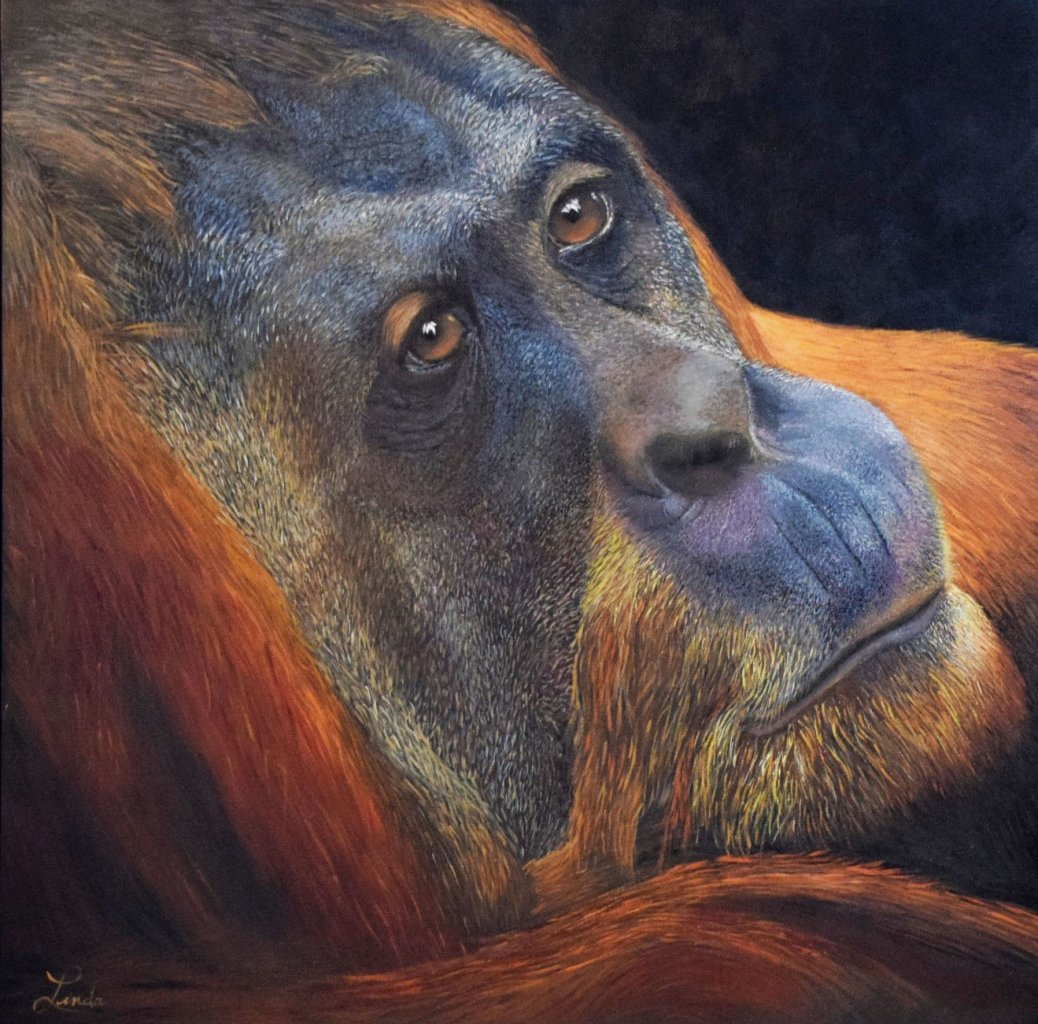 L'homme de la forêt (24x24)