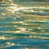 Perles d'eau ©Manon Carrier,
